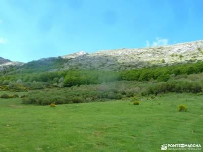Montaña Palentina-Fuentes Carrionas;pueblos madrid ofertas viajes fin de semana salinas de imon rio